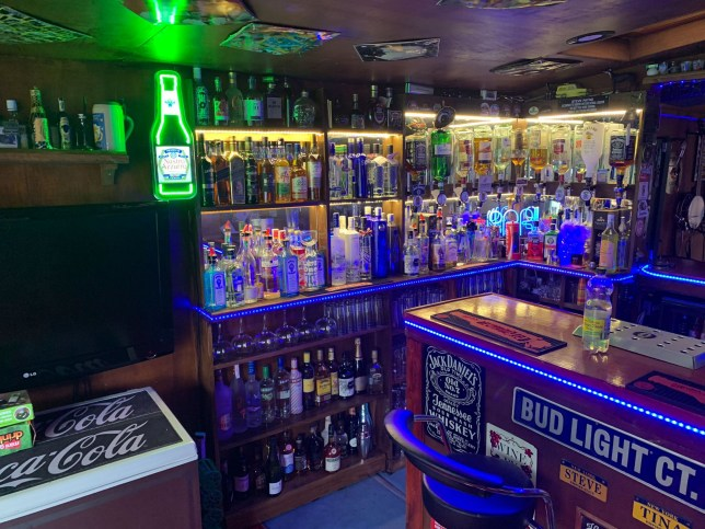A pub loving dad has single-handedly built a ?4,000 bar disguised as a SUMMER HOUSE in his back garden
