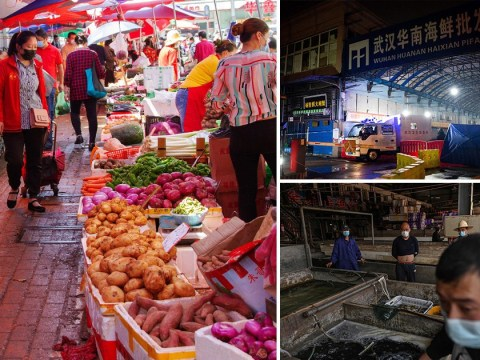Coronavirus did not come from animals in Wuhan market, study finds