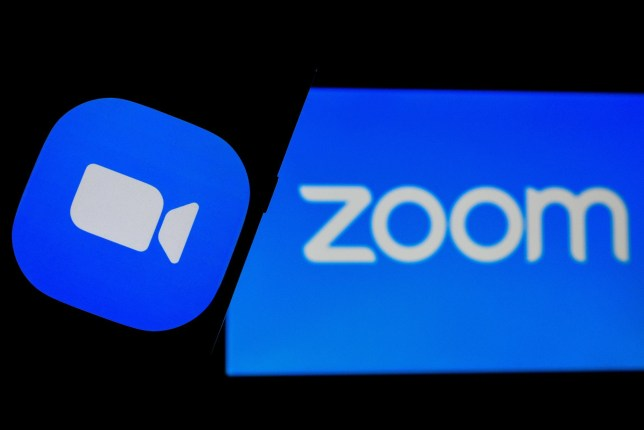 Zoom has become a staple of life under lockdown  (Credits: Debarchan Chatterjee/ZUMA Wire/REX/Shutterstock)
