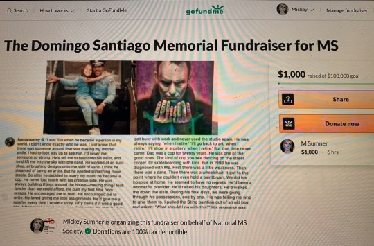 The fundraising page set up following the painting being sent to Sting