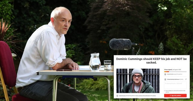Three people have signed a petition for Dominic Cummings to keep his job (Picture: PA, change.org)