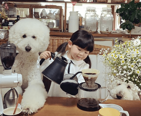 Little girl pouring coffee next to dog