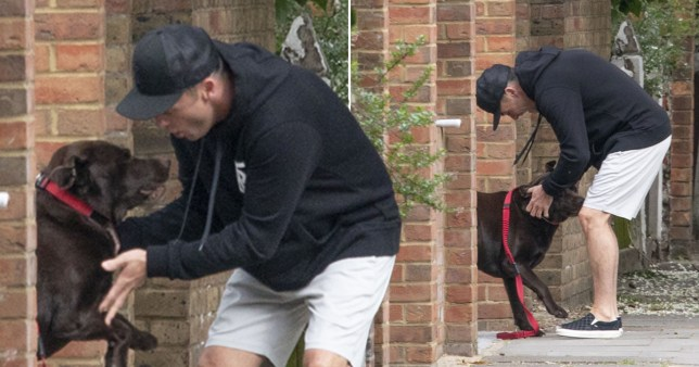 Ant McPartlin picks up dog Hurley from his ex-wife Lisa Armstrong's home