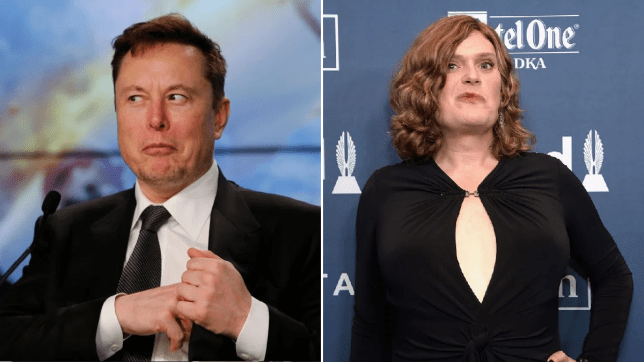 Tesla boss Elon Musk and The Matrix director Lilly Wachowski