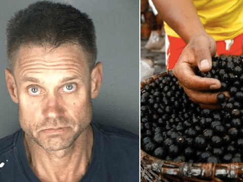 Drug suspect told police his crystal meth was fine because it contained 'healthy' acai berries