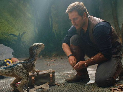 Jurassic World: Dominion 'won't be the end of the franchise'
