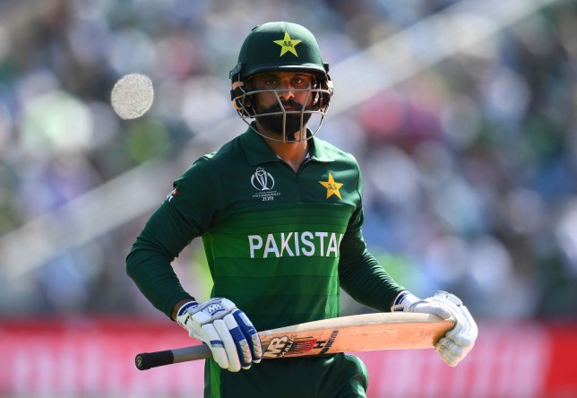 Mohammad Hafeez has criticised India's approach in their World Cup defeat to England