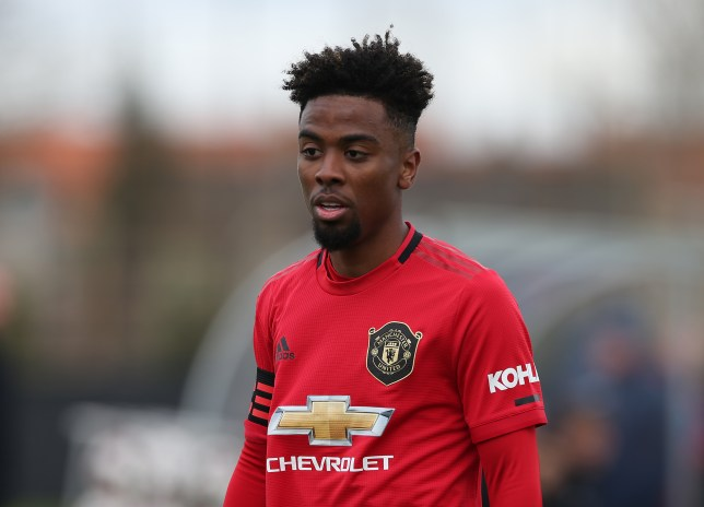 Angel Gomes during Manchester United U23's clash with Club Brugge