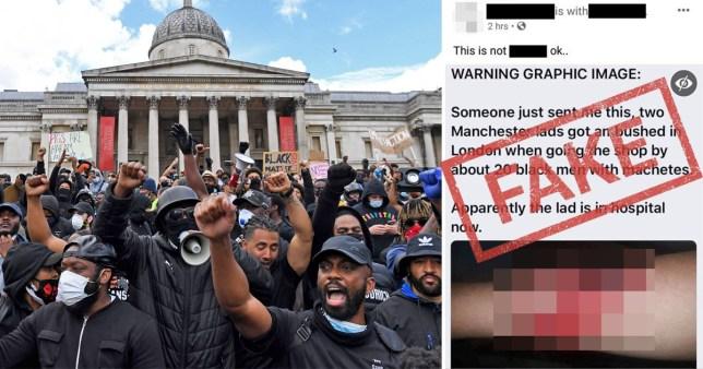 dog attack picture used fake black lives matter