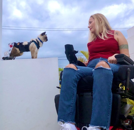 Wheelchair warriors Shannon Nelson and Scooter the Cat