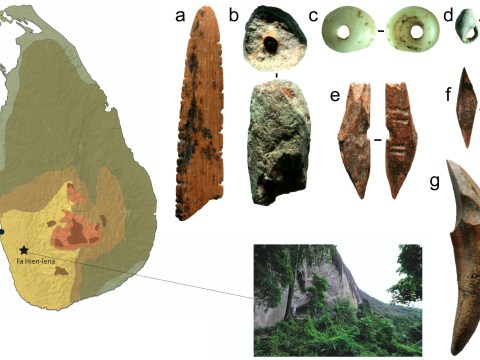 The earliest bows and arrows outside Africa have been found in a Sri Lankan rainforest