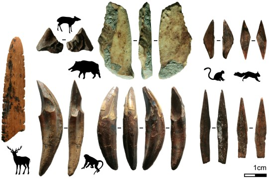 This technology included small bone arrow points, and skin or plant-working tools. (Credits: M. C. Langley / SWNS)
