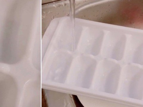 TikTok user shows us we've been filling ice cube trays wrong our entire lives