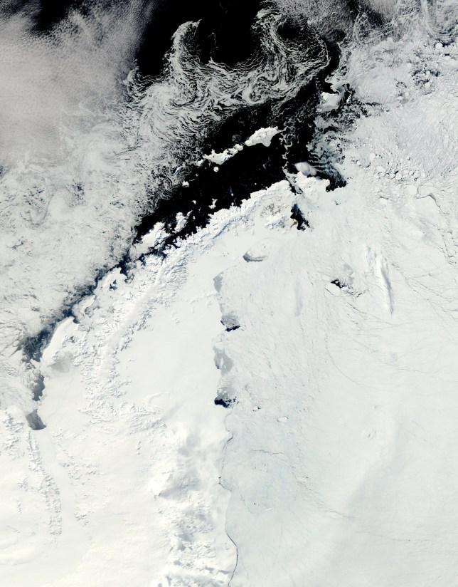 Iceberg the size of Chicago breaks off Antarctic shelf