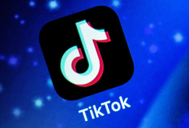 TikTok has come under fire for promoting Nazi-themed videos (Credits: David Talukdar/REX)