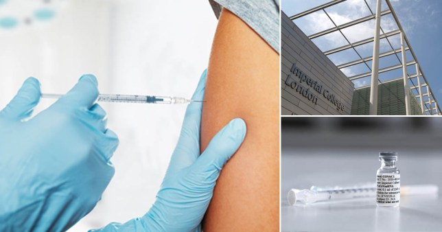 Researchers at Imperial College London will trial a coronavirus vaccine on humans