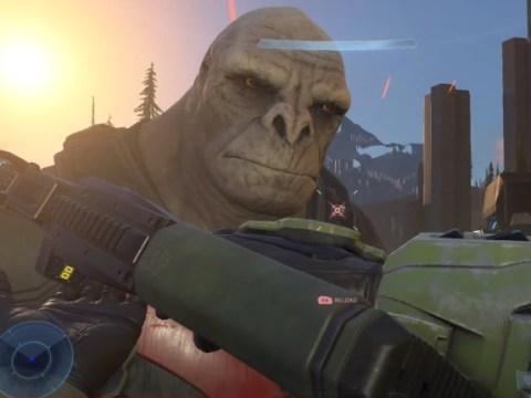 Halo Infinite's graphics are already a meme and they are Brute-al