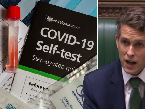 School staff, pupils and their families to have access to home testing kits