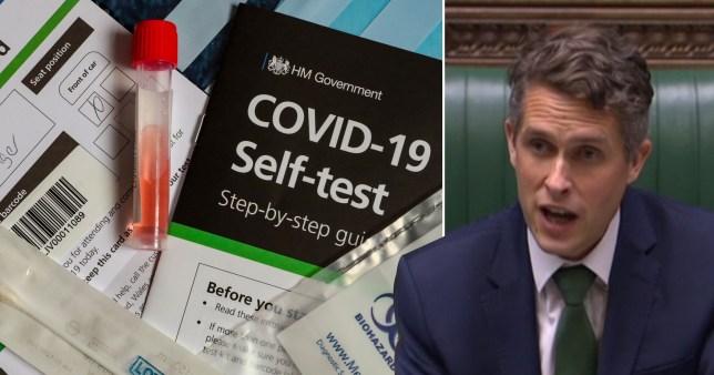 Gavin Williamson and Covid-19 home testing kits