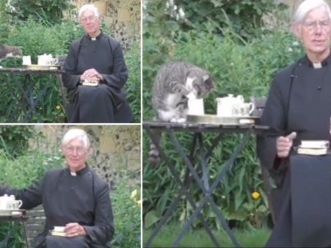 Cat steals focus from Dean of Canterbury by dipping paws in jug of milk