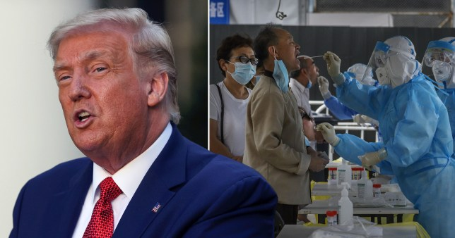 Donald Trump (left) and coronavirus scientists taking samples