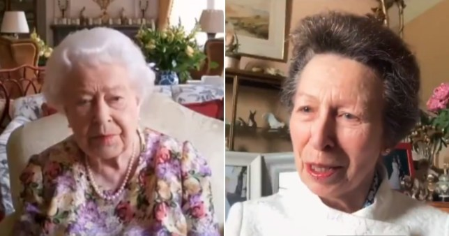 Princess Anne teaches the Queen how to use Zoom.