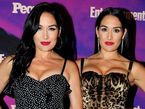 WWE twins Nikki and Brie Bella strip off for stunning nude pregnancy photo shoot