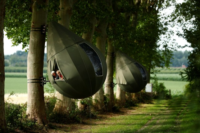 Guests pose a they sit inside a tear drop-shaped tent hanging from a tree created by Dutch artist Dre Wapenaar, offering an unusual accommodation for tourists in the Belgian countryside, near Borgloon, Belgium, July 7, 2020. Picture taken July 7, 2020. REUTERS/Francois Lenoir