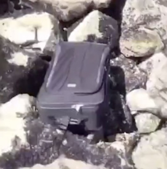 Footage of the discovery in the suitcase was uploaded to TikTok.