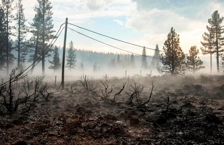 La grêle tombe sur un paysage couvant lors de l'incendie de Hog près de Susanville, en Californie, le 21 juillet 2020. - Une cellule d'orage mélangée à une colonne de cendres de pyrocumulus du feu de Hog, entraînant des vents et des éclairs erratiques avant d'évoluer en une tempête de grêle qui s'est éteinte une partie du feu.