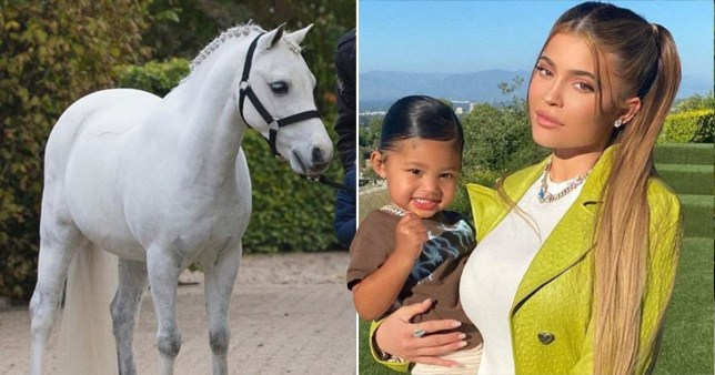 Kylie Jenner buys pony for Stormi