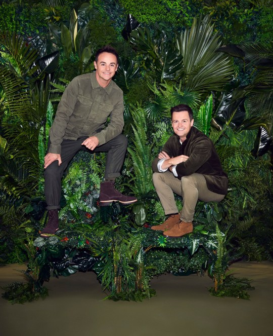 Editorial use only. Mandatory Credit: Photo by ITV/REX (10468298a) Anthony McPartlin and Declan Donnelly 'I'm A Celebrity... Get Me Out Of Here!' TV Show, Series 19, UK - 2019