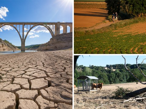 Extreme drought to hit Europe if we don't do more to combat climate change