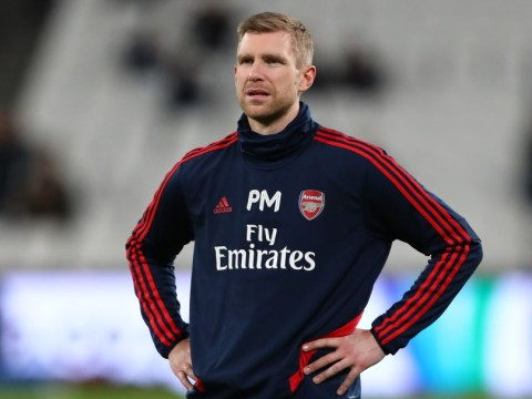 Arsenal hero Per Mertesacker admits he was a panic buy for Arsene Wenger