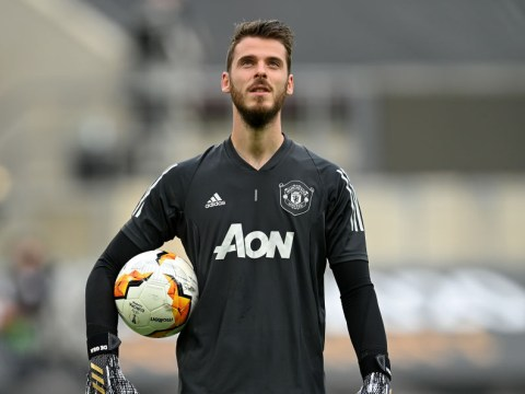 David de Gea calls for experienced Manchester United signings this summer