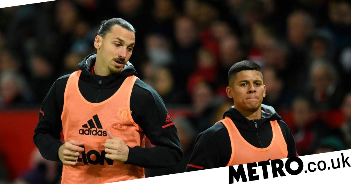 Rojo reveals Mourinho broke up furious row after calling Ibrahimovic 'big nose' - Metro.co.uk