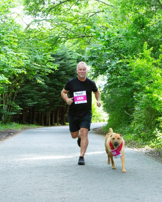 Kai the shar-pei cross with owner Ian Russell, running as part of their August challenge to raise money for charity