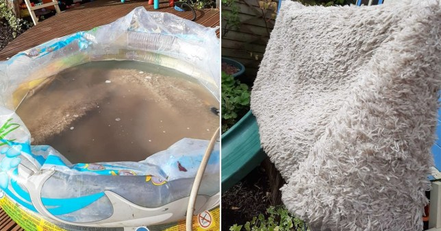 Wash your rug in a paddling pool