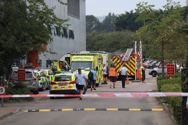 Royal Mail depot in Chelmsford evacuated after worker suffers rash from package