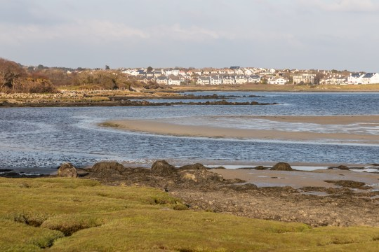 Salthill houses and Silvestrand beach in Galway Bay, Salthill, Galway, Ireland