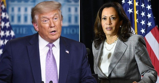 Donald Trump has already been stoking birther rumours about would-be vice president Kamala Harris Pics: Rex/AFP