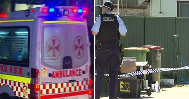 Garçon, 5 ans, se battant pour la vie après le pire cas d'enfants battus par le médecin?  Tiré de: https://www.abc.net.au/news/2020-08-29/five-year-old-boy-critical-after-sydney-home-assault/12609138