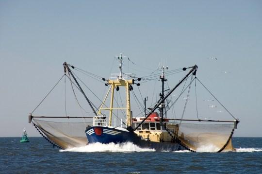 Photographie d'un bateau de pêche