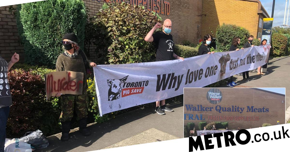 Vegans pelted with KFC chicken legs as they protest outside butchers