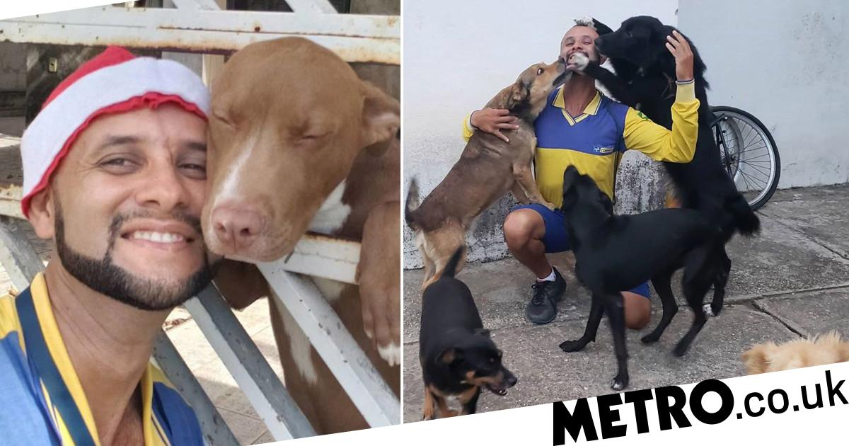 Postman makes friends with every animal he meets on the job