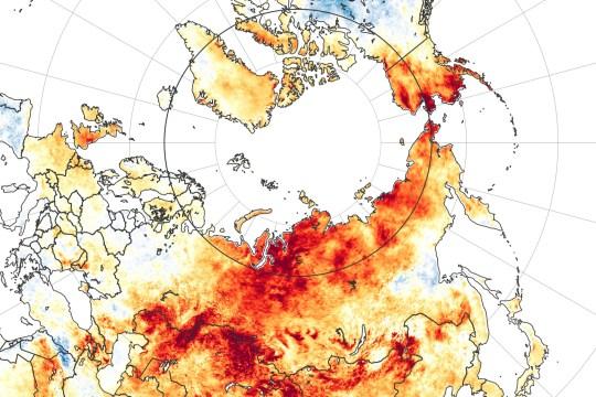 Une carte montrant les anomalies de température à la surface du sol du 19 mars au 20 juin 2020.
