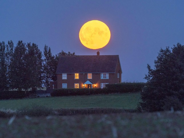 The full Corn moon seen rising in Eastchurch, Kent yesterday evening. (Credits: Alamy Live News.)