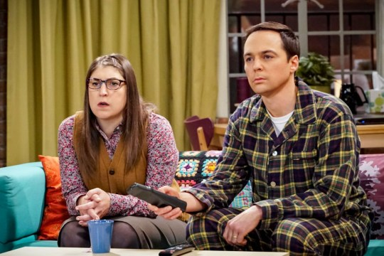 Amy and sheldon big bang theory