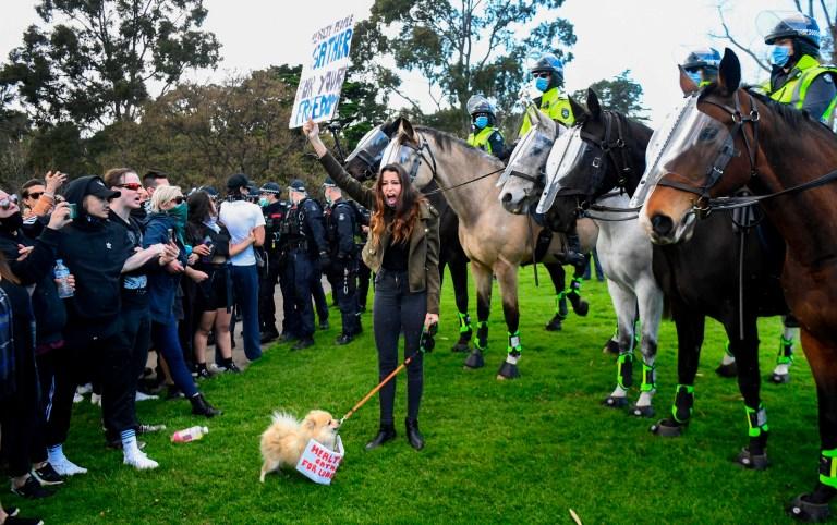 Certains manifestants ont même amené leurs chiens à la manifestation anti-lockdown.