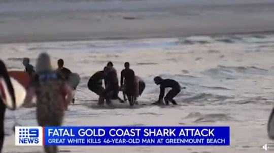 Beach camera footage captured the moment Nick Slater was mauled by a shark on Australia's Gold Coast.